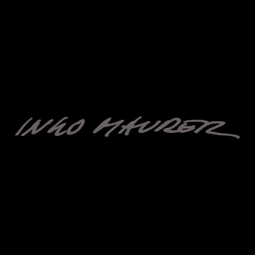 logo_ingomaurer
